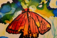SOLD: MONARCH BUTTERFLY