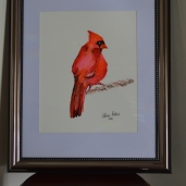 "RED CARDINAL ""I love this piece, it's very minimalistic. The use of the bright colours are absolutely stunning. Keep up the great work!""-Peter."
