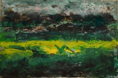 Pastures: Beeswax, dry pigments oil painting on a gallery style wooden panel ready for display Size: 16 inches x 12 inches